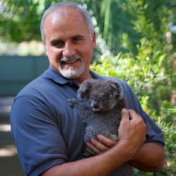 rob-and-koala-1