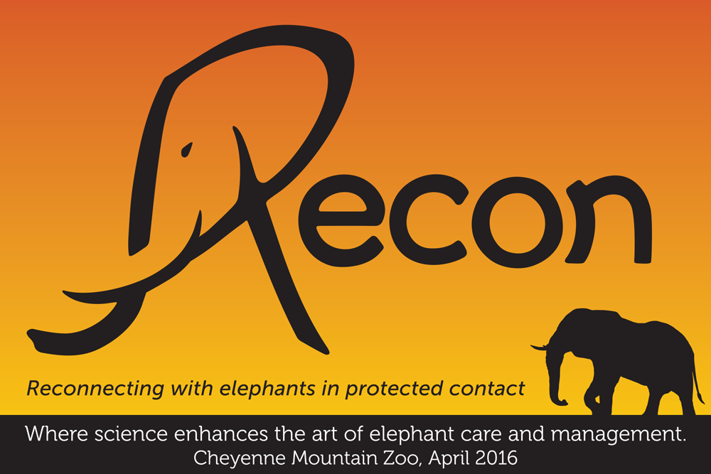Recon - Connecting with elephants in protected contact